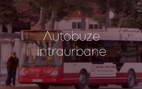 EMISALBA - Autobuze intraurbane